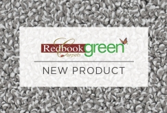 Redbook green Carpet | Introducing Verde