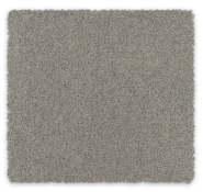 Cut Pile Twist Carpet Feltex Bailey