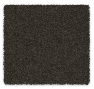Cut Pile Twist Carpet Redbook Bekton Hall