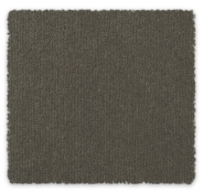 Cut Pile Plush Carpet Berkley Feltex