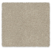 100% SDN Cut Pile Twist Soft Carpet Redbook