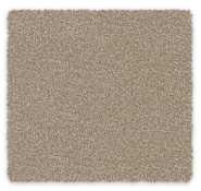 Triexta Carpet Redbook Green Daybreak