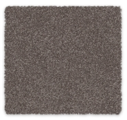 Cut Pile Twist Carpet Discovery Feltex