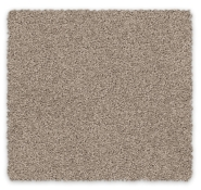 Cut Pile Twist Soft Carpet Redbook Carpet Gentle Essence
