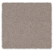 Cut Pile Twist SDN Carpet Grand Estate