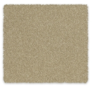 Cut Pile Twist Carpet SDN Feltex Orchard Park