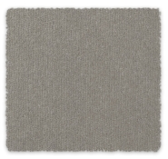 Wool Blend Plush Carpet Queensbury Feltex Carpets