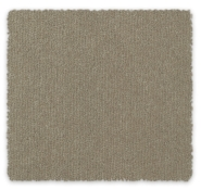 Cut Pile Plush Carpet Queensbury Feltex