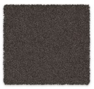 Cut Pile Twist Carpet Radiance Feltex Carpets