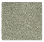 Redbook green Triexta Carpet Revive