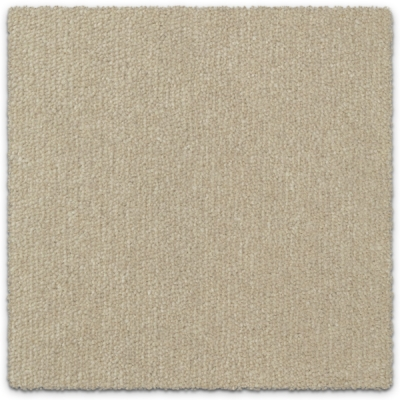 Wool Blend Plush Carpet Feltex Berkley