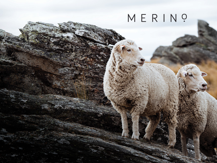 Merino Wool Soft Carpets