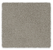 Cut Pile Twist Carpet Cable Bay