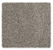 Cut Pile Twist Carpet Feltex Cooks Cove
