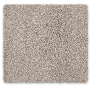 Cut Pile Twist Carpet Feltex Hook River