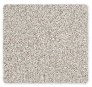 Cut Pile Plush Carpet Maryland