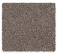 Cut Pile Twist Carpet Ohio