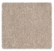 Cut Pile Twist Nylon Carpet Feltex Providence