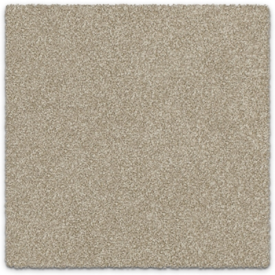 Cut Pile Twist Carpet Feltex Rockvale