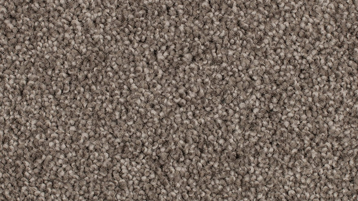 Coastal stipple feltex classic for What carpet should i buy