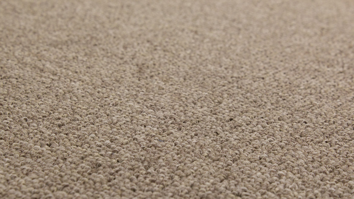 Kings domain feltex carpets for What carpet should i buy